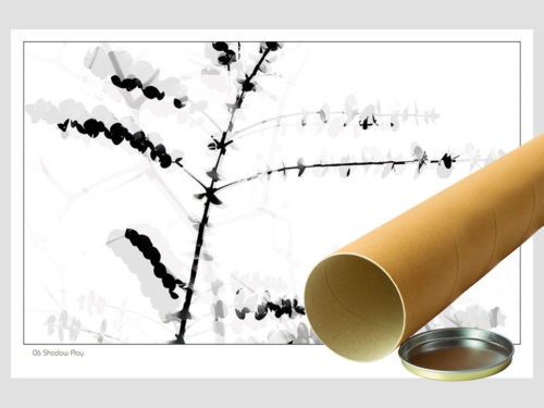 Abstract-Gallery-06-SHADOW-PLAY-postal-Photography-by-Michael-Collins