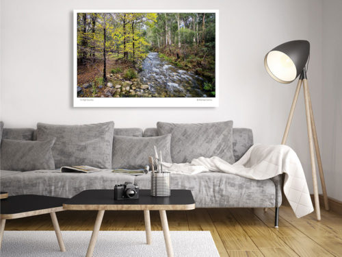 Classic-Gallery-Landscape-15-HIGH-COUNTRY-wall-art-Photography-by-Michael-Collins